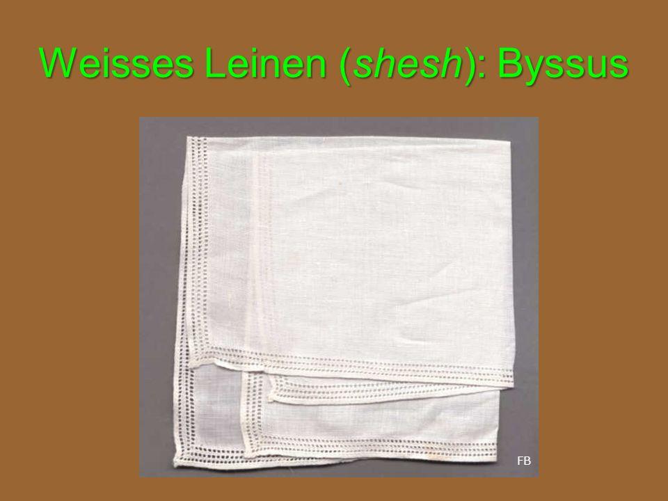 Weisses Leinen (shesh): Byssus FB