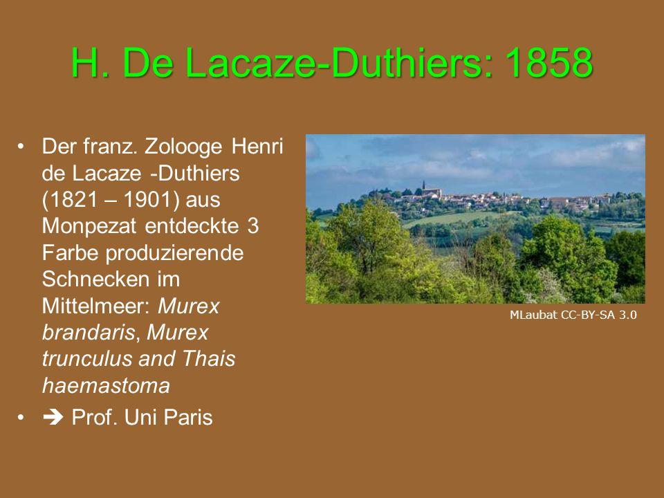 H. De Lacaze-Duthiers: 1858 Der franz. Zolooge Henri de Lacaze -Duthiers (1821 – 1901) aus Monpezat entdeckte 3 Farbe produzierende Schnecken im Mitte