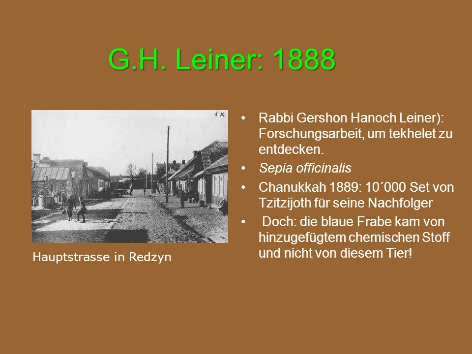 G.H. Leiner: 1888 Rabbi Gershon Hanoch Leiner): Forschungsarbeit, um tekhelet zu entdecken. Sepia officinalis Chanukkah 1889: 10´000 Set von Tzitzijot