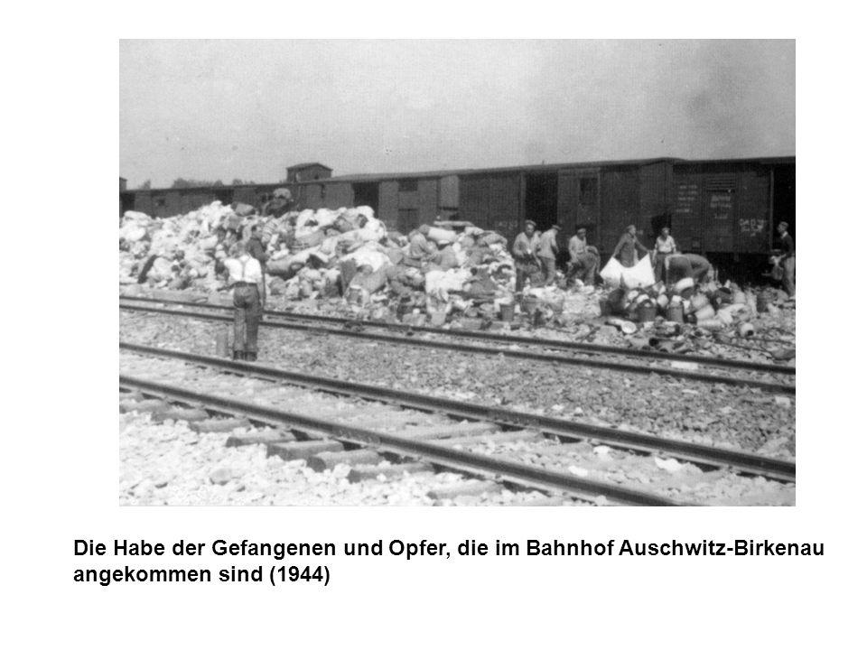 Die Habe der Gefangenen und Opfer, die im Bahnhof Auschwitz-Birkenau angekommen sind (1944)