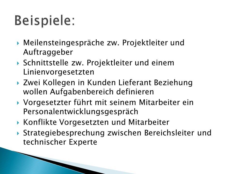  Meilensteingespräche zw. Projektleiter und Auftraggeber  Schnittstelle zw.