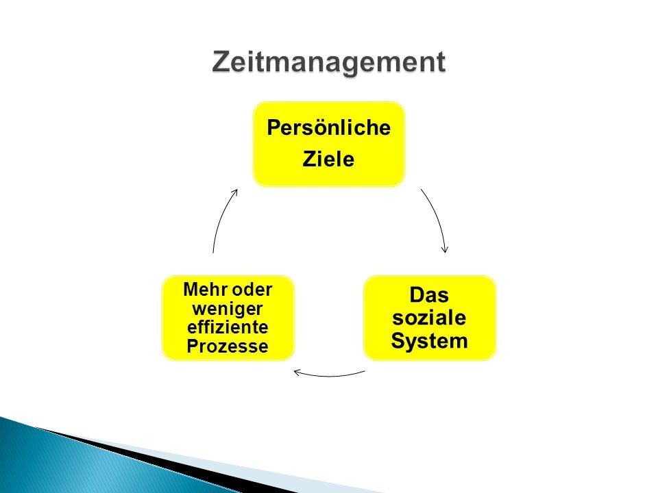 Persönliche Ziele Das soziale System Mehr oder weniger effiziente Prozesse