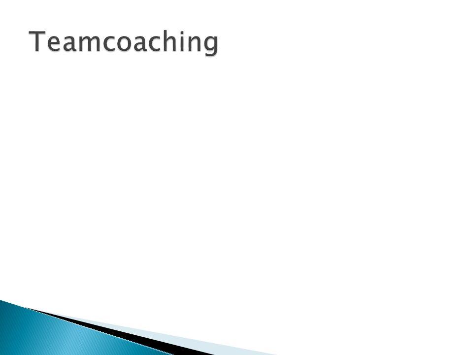  Was sind die Erwartungen der Teammitglieder, Was soll erreicht werden  Was sind die Erwartungen und Möglichkeiten des Coach.