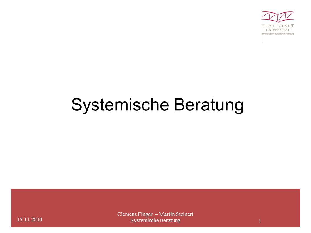 1 Systemische Beratung Clemens Finger – Martin Steinert Systemische Beratung 15.11.2010