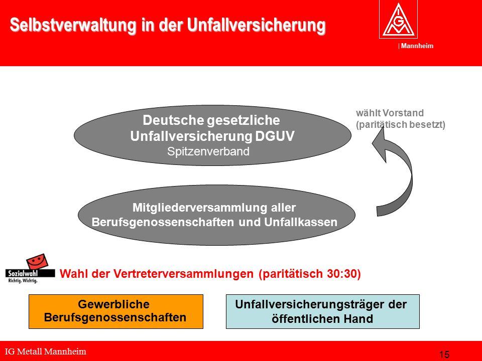 IG Metall Mannheim Mannheim Selbstverwaltung in der Unfallversicherung Deutsche gesetzliche Unfallversicherung DGUV Spitzenverband Wahl der Vertreterv