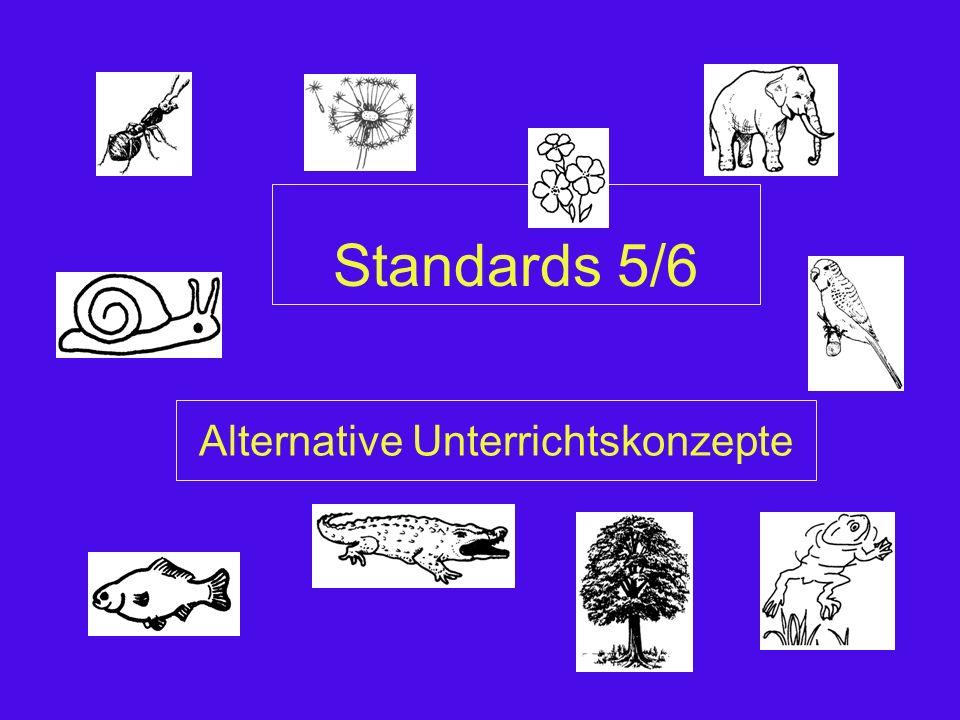 Leitgedanken NW (relevant für 5/6)  Was heißt Naturwissenschaft.