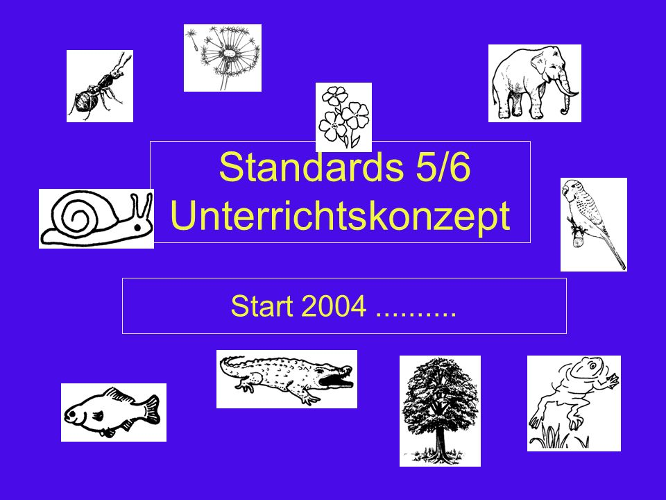 Standards 5/6 Unterrichtskonzept Start 2004..........