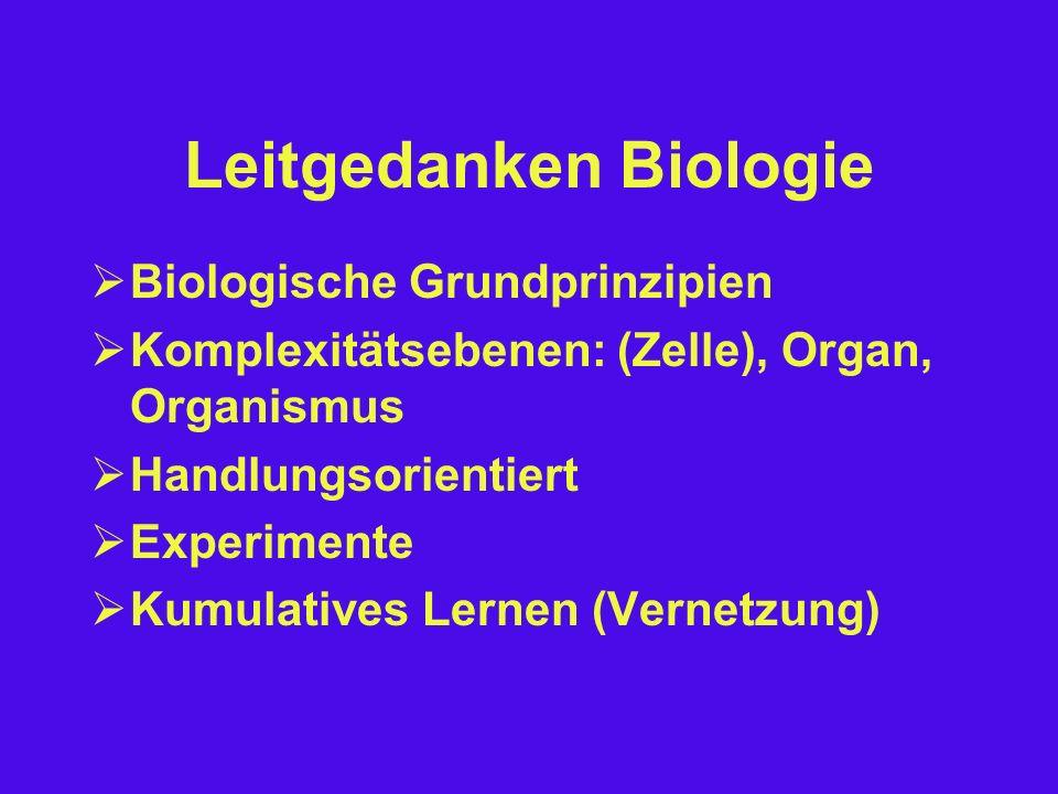 Vielfalt Verwandtschaft Krebstiere: Flusskrebs, Wasserfloh, Garnele, Krabbe, Hummer...