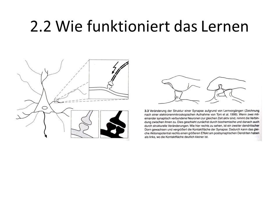 2.2 Wie funktioniert das Lernen