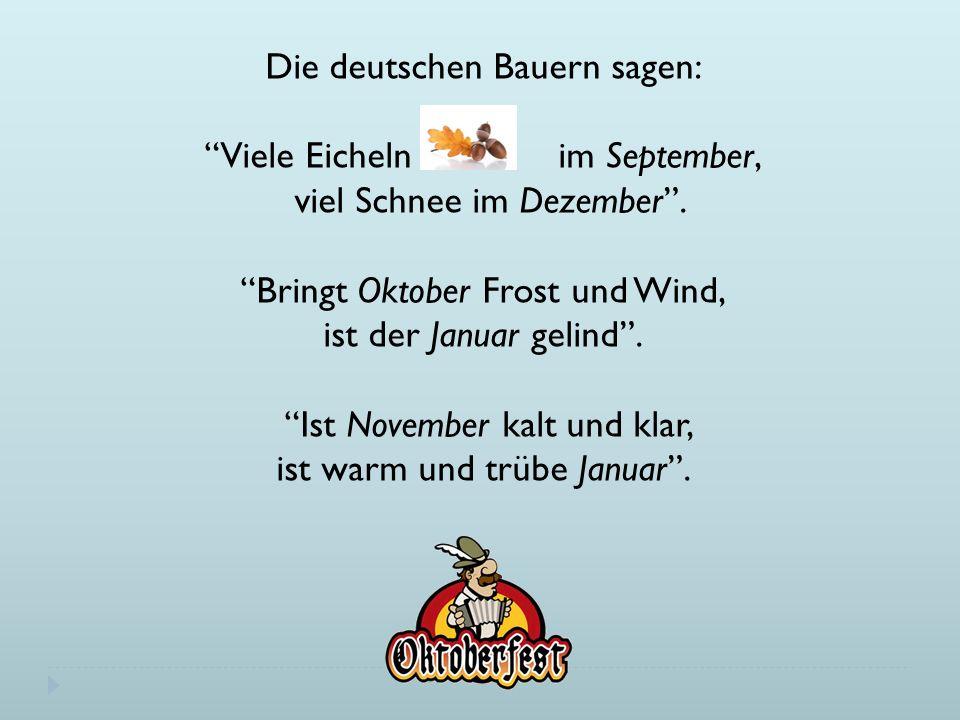 Die deutschen Bauern sagen: Viele Eicheln im September, viel Schnee im Dezember .