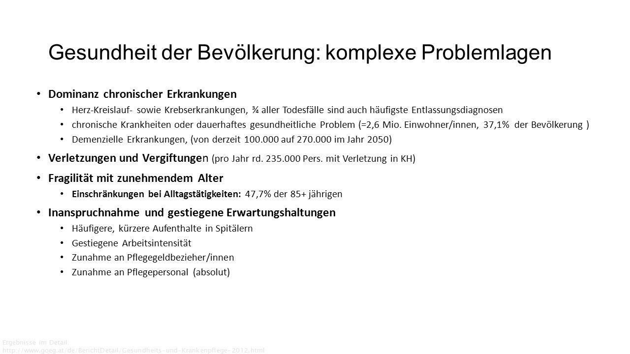 Bestandsaufnahme: zusätzliche Berufe in der Primärversorgung Groenewegen et.al.