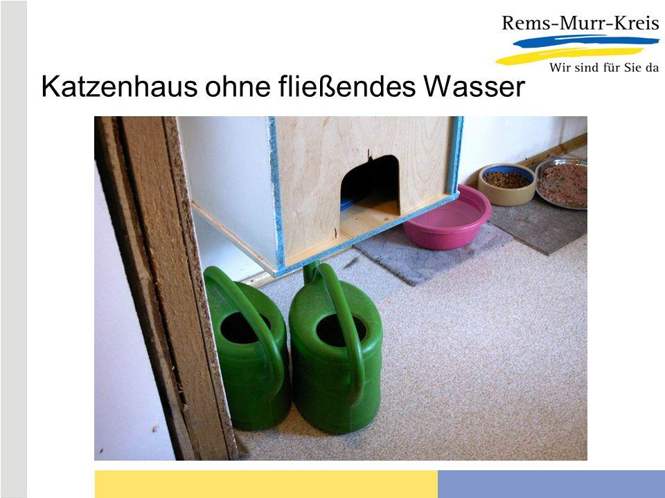 Katzenhaus ohne fließendes Wasser