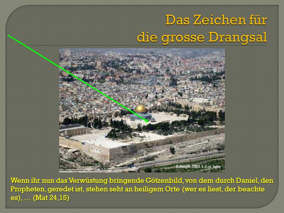 Wenn ihr nun das Verwüstung bringende Götzenbild, von dem durch Daniel, den Propheten, geredet ist, stehen seht an heiligem Orte (wer es liest, der be