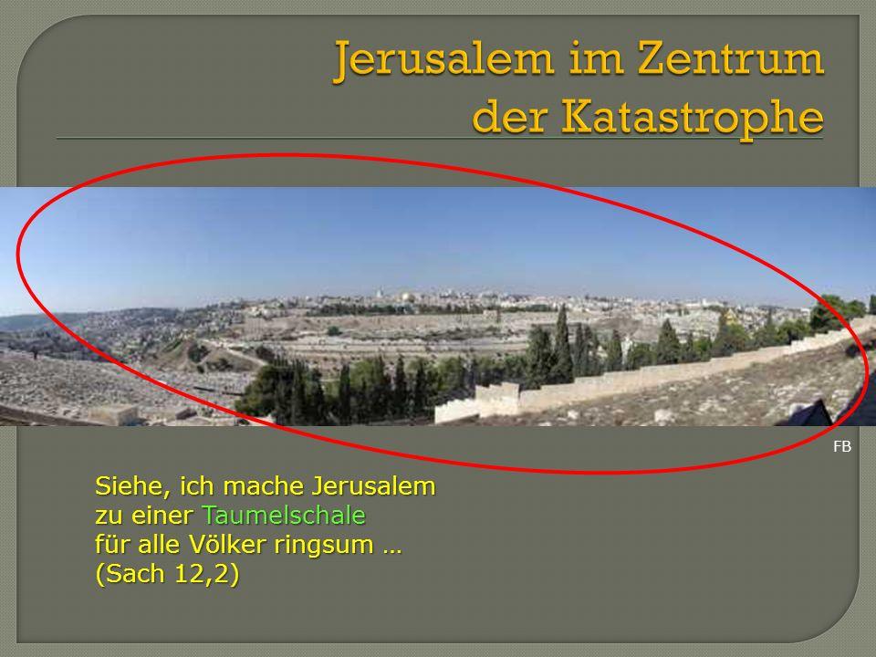 Siehe, ich mache Jerusalem zu einer Taumelschale für alle Völker ringsum … (Sach 12,2) FB