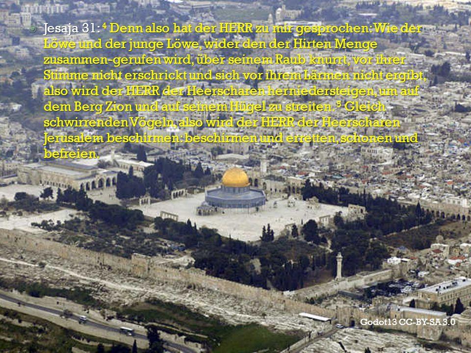 Godot13 CC-BY-SA 3.0  Jesaja 31: 4 Denn also hat der HERR zu mir gesprochen: Wie der Löwe und der junge Löwe, wider den der Hirten Menge zusammen-ger