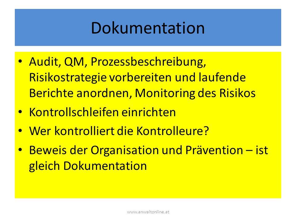 Dokumentation Audit, QM, Prozessbeschreibung, Risikostrategie vorbereiten und laufende Berichte anordnen, Monitoring des Risikos Kontrollschleifen einrichten Wer kontrolliert die Kontrolleure.