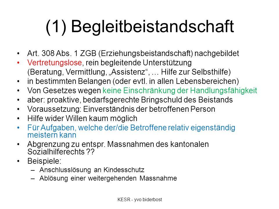 (1) Begleitbeistandschaft Art. 308 Abs. 1 ZGB (Erziehungsbeistandschaft) nachgebildet Vertretungslose, rein begleitende Unterstützung (Beratung, Vermi