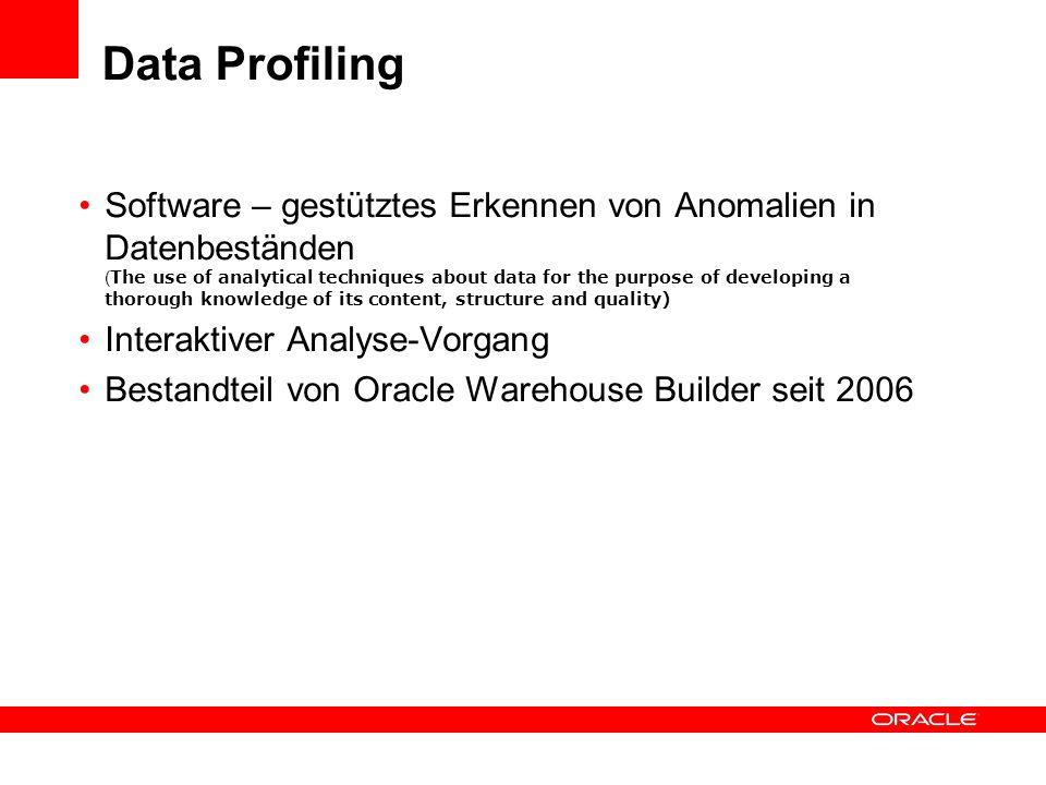 Data Profiling Software – gestütztes Erkennen von Anomalien in Datenbeständen ( The use of analytical techniques about data for the purpose of develop