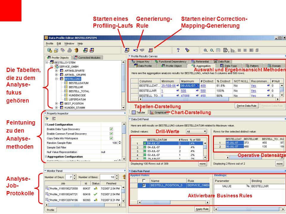 Auswahl und Ergebnisansicht Methoden Chart-Darstellung Tabellen-Darstellung Drill-Werte Operative Datensätze Die Tabellen, die zu dem Analyse- fukus gehören Feintuning zu den Analyse- methoden Analyse- Job- Protokolle Aktivierbare Business Rules Starten eines Profiling-Laufs Starten einer Correction- Mapping-Generierung Generierung- Rule