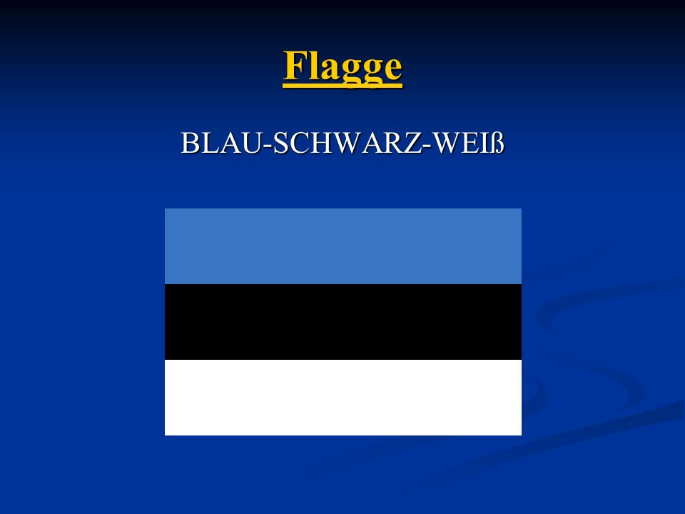 Flagge BLAU-SCHWARZ-WEIß