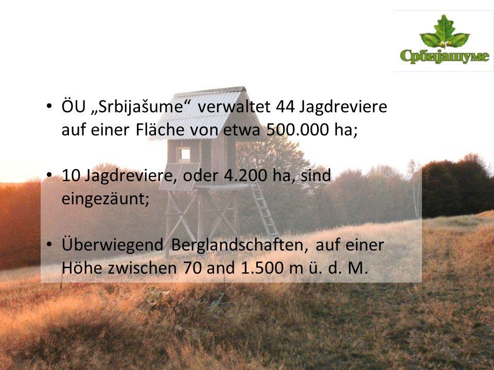 """ÖU """"Srbijašume"""" verwaltet 44 Jagdreviere auf einer Fläche von etwa 500.000 ha; 10 Jagdreviere, oder 4.200 ha, sind eingezäunt; Überwiegend Berglandsch"""