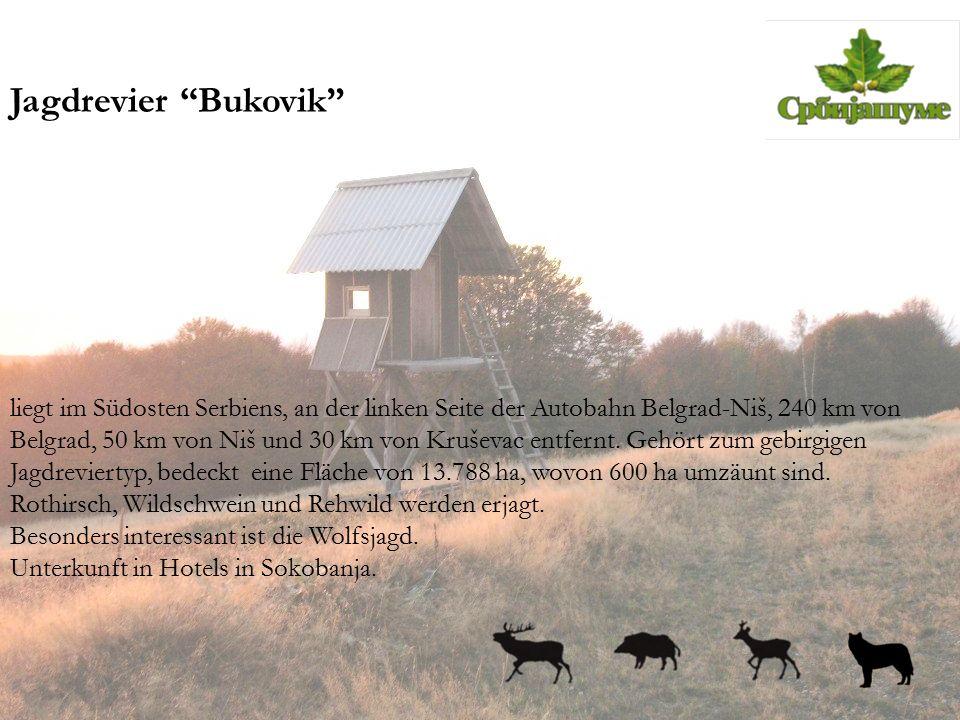 """Jagdrevier """"Bukovik"""" liegt im Südosten Serbiens, an der linken Seite der Autobahn Belgrad-Niš, 240 km von Belgrad, 50 km von Niš und 30 km von Kruševa"""
