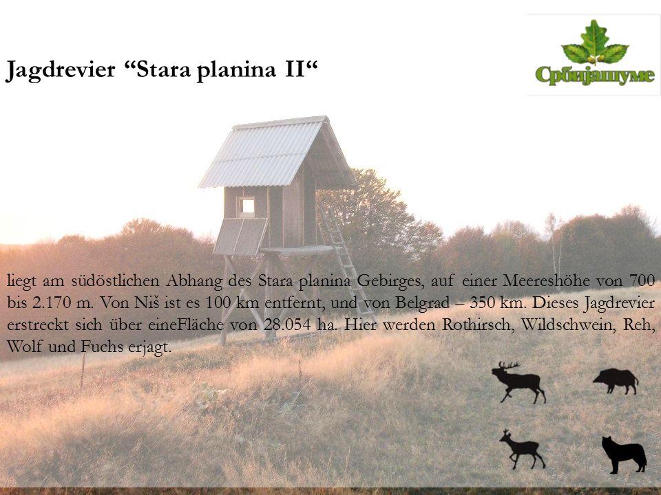 """Jagdrevier """"Stara planina II"""" liegt am südöstlichen Abhang des Stara planina Gebirges, auf einer Meereshöhe von 700 bis 2.170 m. Von Niš ist es 100 km"""
