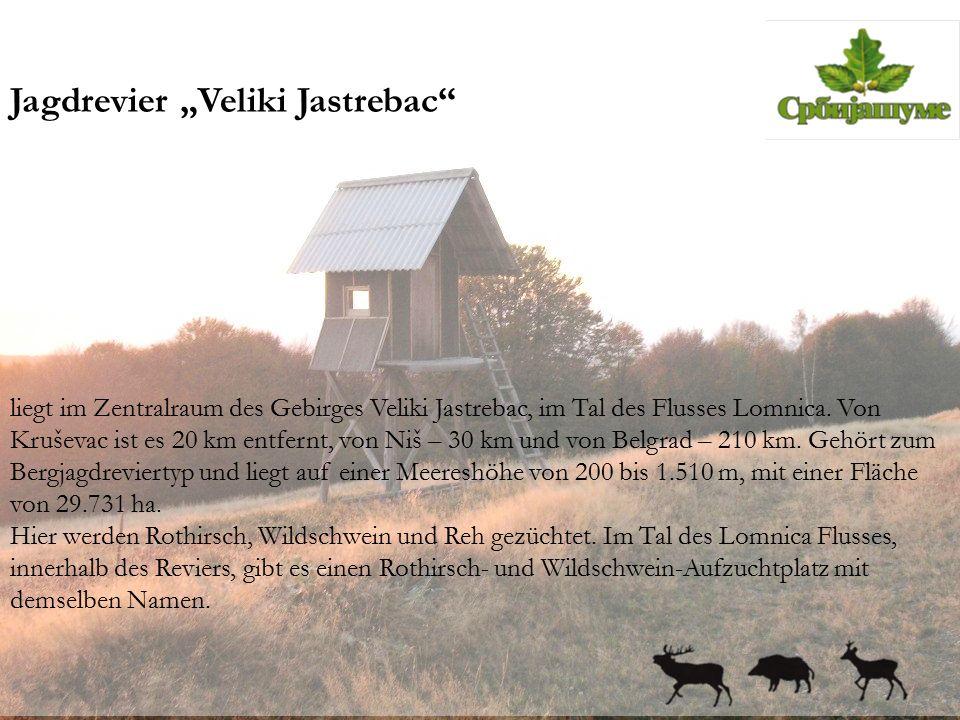 """Jagdrevier """"Veliki Jastrebac"""" liegt im Zentralraum des Gebirges Veliki Jastrebac, im Tal des Flusses Lomnica. Von Kruševac ist es 20 km entfernt, von"""