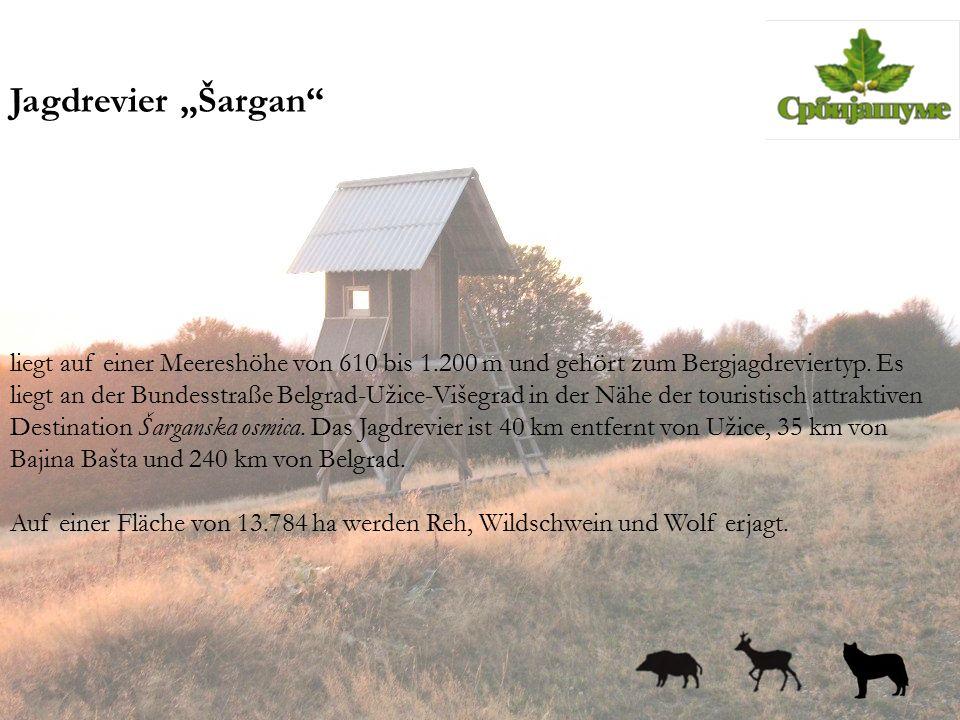 """Jagdrevier """"Šargan"""" liegt auf einer Meereshöhe von 610 bis 1.200 m und gehört zum Bergjagdreviertyp. Es liegt an der Bundesstraße Belgrad-Užice-Višegr"""