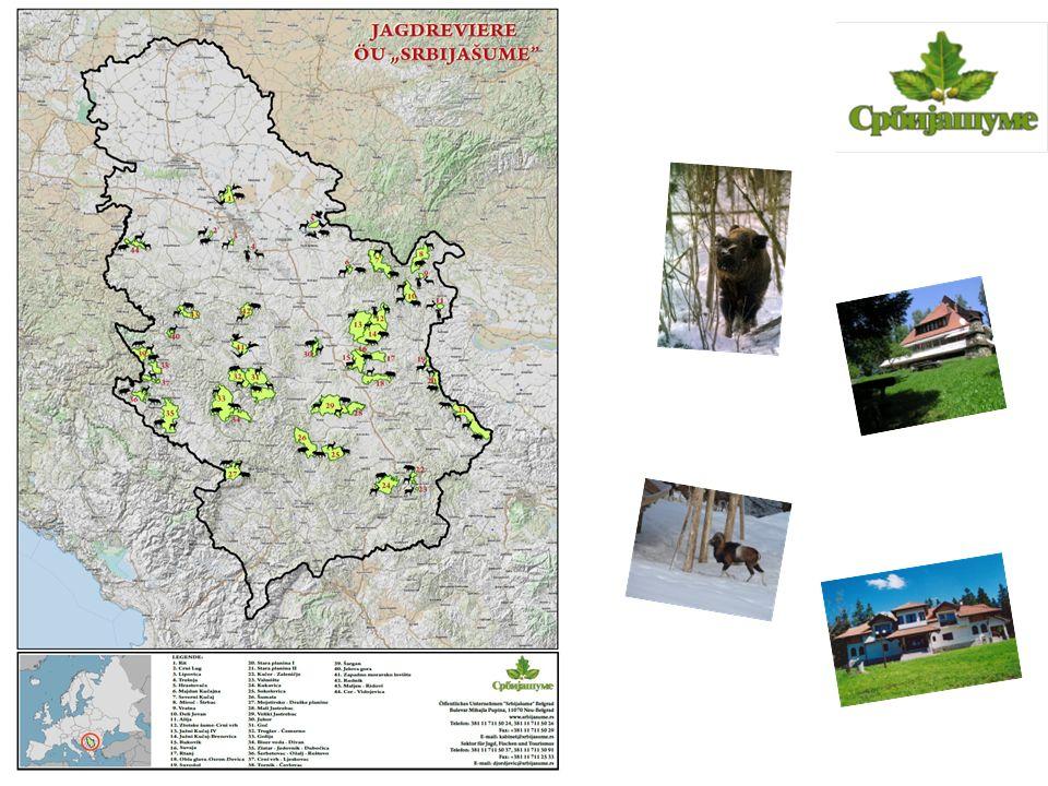 """Jagdrevier """"Crni lug liegt am linken Ufer des Flusses Sava, 30 km westlich von Belgrad, und vom Flughafen """"Nikola Tesla ist es nur 20 km entfernt."""