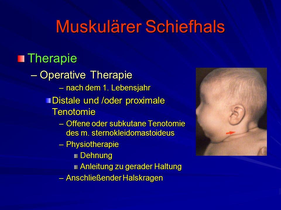 Muskulärer Schiefhals Therapie –Operative Therapie –nach dem 1.