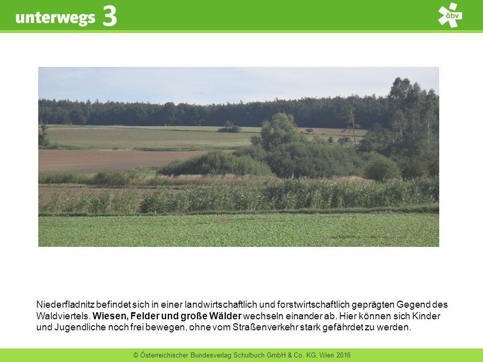 © Österreichischer Bundesverlag Schulbuch GmbH & Co. KG, Wien 2016 3 Niederfladnitz befindet sich in einer landwirtschaftlich und forstwirtschaftlich