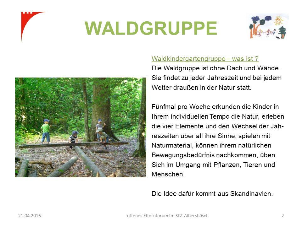 WALDGRUPPE Waldkindergartengruppe – was ist . Die Waldgruppe ist ohne Dach und Wände.