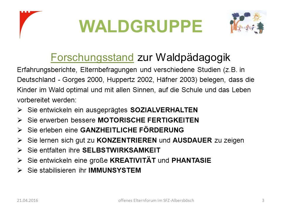 WALDGRUPPE Forschungsstand zur Waldpädagogik Erfahrungsberichte, Elternbefragungen und verschiedene Studien (z.B.