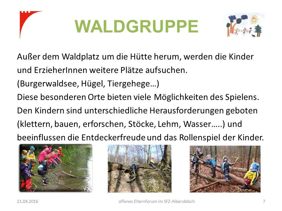 WALDGRUPPE Außer dem Waldplatz um die Hütte herum, werden die Kinder und ErzieherInnen weitere Plätze aufsuchen.