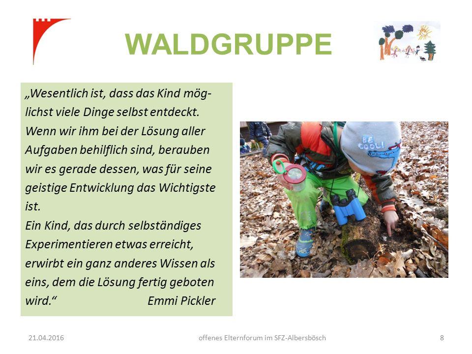 """WALDGRUPPE """"Wesentlich ist, dass das Kind mög- lichst viele Dinge selbst entdeckt."""