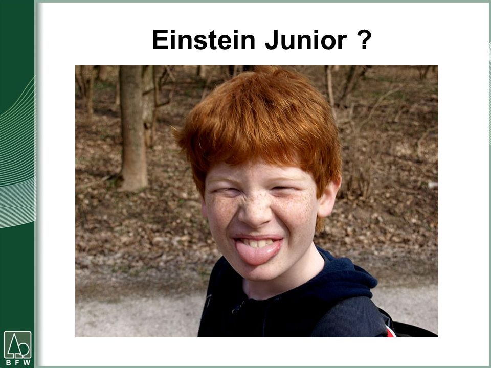 Einstein Junior ?