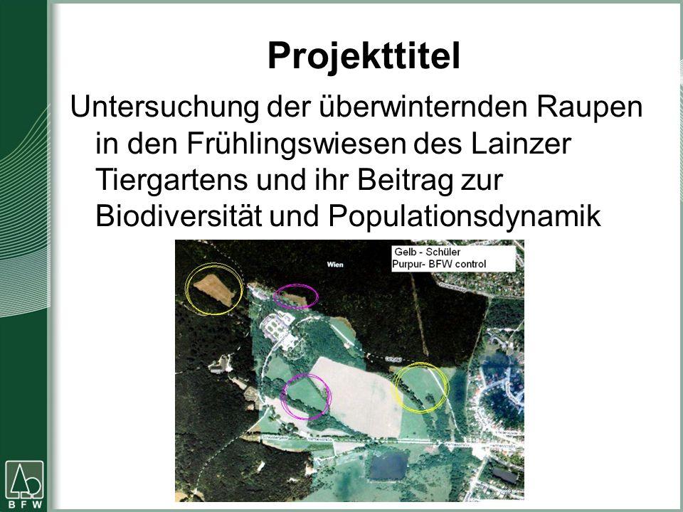 Projekttitel Untersuchung der überwinternden Raupen in den Frühlingswiesen des Lainzer Tiergartens und ihr Beitrag zur Biodiversität und Populationsdy