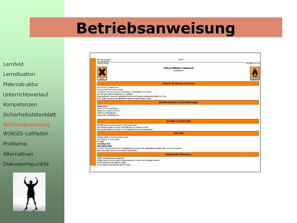 Betriebsanweisung Lernfeld Lernsituation Makrostruktur Unterrichtsverlauf Kompetenzen Sicherheitsdatenblatt Betriebsanweisung WINGIS-Leitfaden Probleme Alternativen Diskussionspunkte