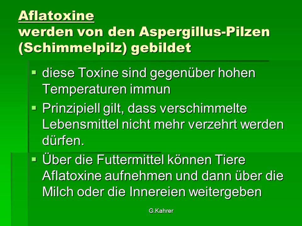 G.Kahrer Aflatoxine werden von den Aspergillus-Pilzen (Schimmelpilz) gebildet  diese Toxine sind gegenüber hohen Temperaturen immun  Prinzipiell gilt, dass verschimmelte Lebensmittel nicht mehr verzehrt werden dürfen.