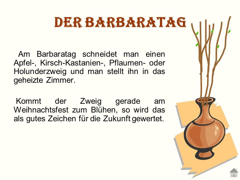 Der Barbaratag Am Barbaratag schneidet man einen Apfel-, Kirsch-Kastanien-, Pflaumen- oder Holunderzweig und man stellt ihn in das geheizte Zimmer.