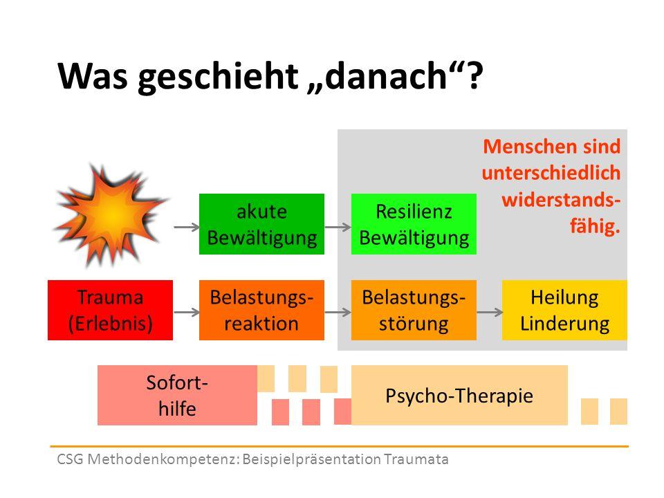 Traumata erst nehmen 1.Trauma-Folgen bleiben oft unverstanden.