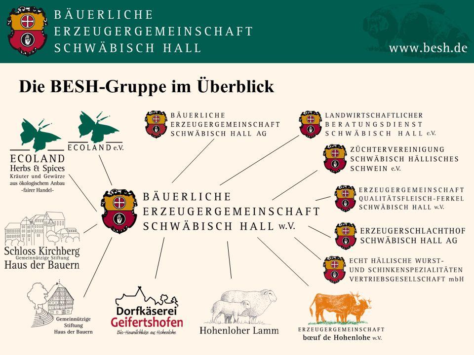 Die BESH-Gruppe im Überblick