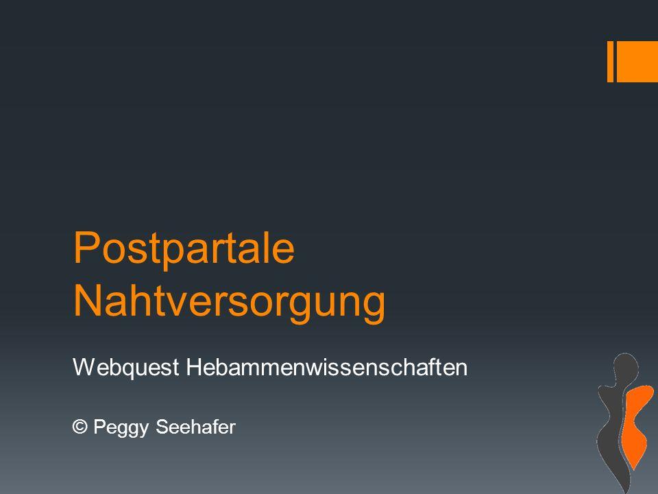 Postpartale Nahtversorgung Webquest Hebammenwissenschaften © Peggy Seehafer