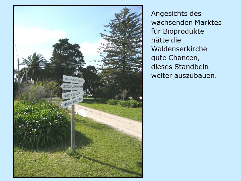 Angesichts des wachsenden Marktes für Bioprodukte hätte die Waldenserkirche gute Chancen, dieses Standbein weiter auszubauen.