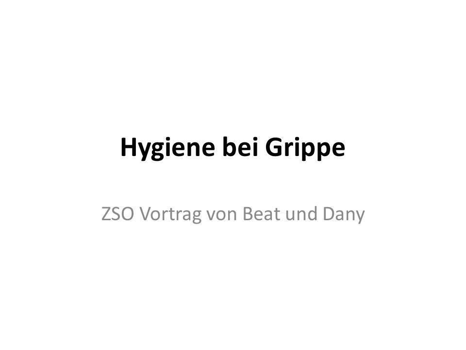 Hygiene bei Grippe ZSO Vortrag von Beat und Dany