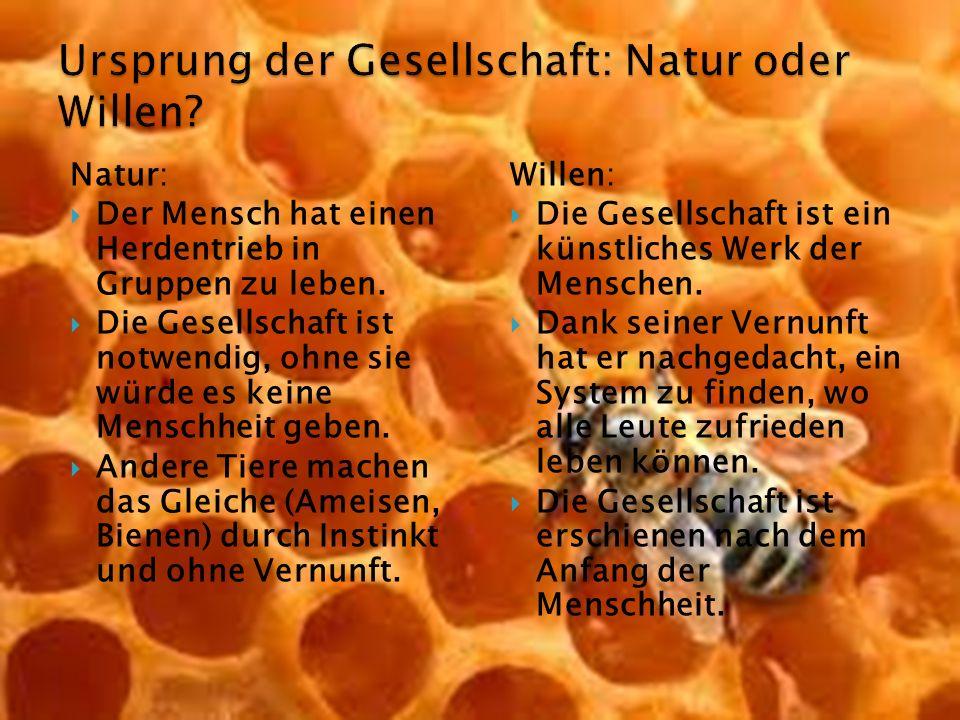 Natur:  Der Mensch hat einen Herdentrieb in Gruppen zu leben.