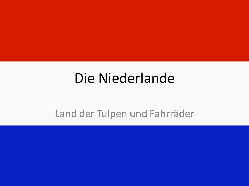 Die Niederlande Land der Tulpen und Fahrräder