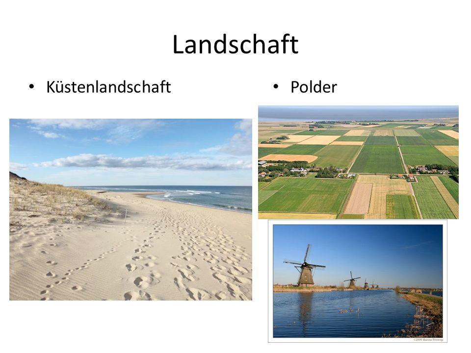 Landschaft Küstenlandschaft Polder
