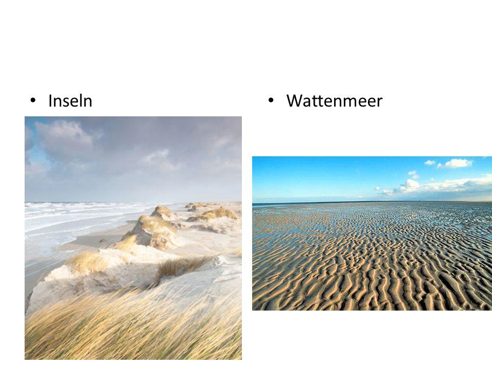 Inseln Wattenmeer
